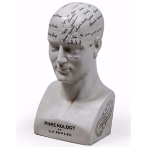 Large Antiqued Ceramic Phrenology Head