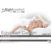 egyptian cotton 2 pillow - cotton - pillow - pillows - bedding - comfort - sleep - steptoes - home - accessories